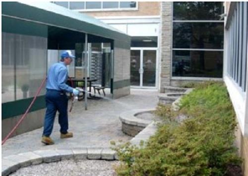Safety Risks of Pest Control